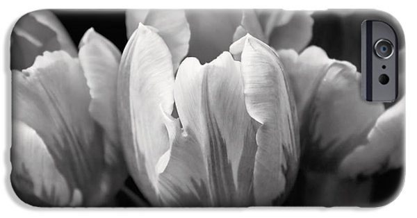 Monotone iPhone Cases - Tulip Flowers Black and White iPhone Case by Jennie Marie Schell