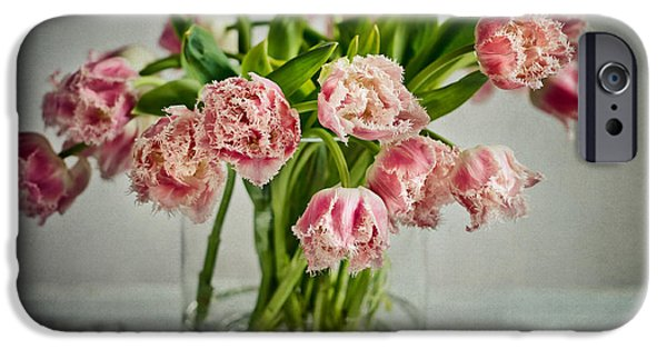 Tulips Photographs iPhone Cases - Tulip Still Life iPhone Case by Nailia Schwarz