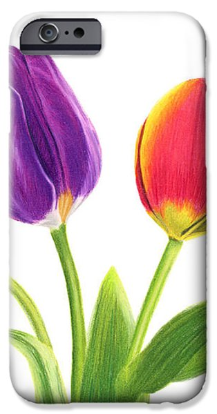 Tulip Trio iPhone Case by Sarah Batalka
