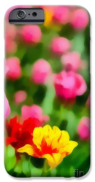 Tulips iPhone Case by Amy Cicconi