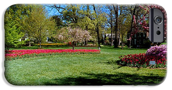 Built Structure iPhone Cases - Tulips And Cherry Trees In A Garden iPhone Case by Panoramic Images