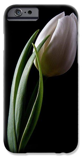 Tulips III iPhone Case by Tom Mc Nemar