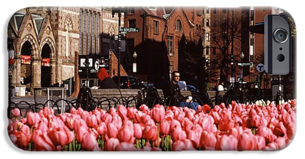 City. Boston iPhone Cases - Tulips In A Garden With Old South iPhone Case by Panoramic Images