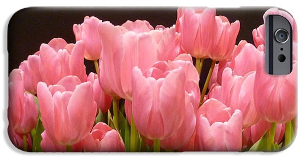 Thinking iPhone Cases - Tulips in Bloom iPhone Case by Lingfai Leung