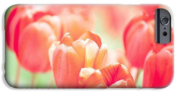 Kaypickens.com iPhone Cases - Tulips in the Sun iPhone Case by Kay Pickens