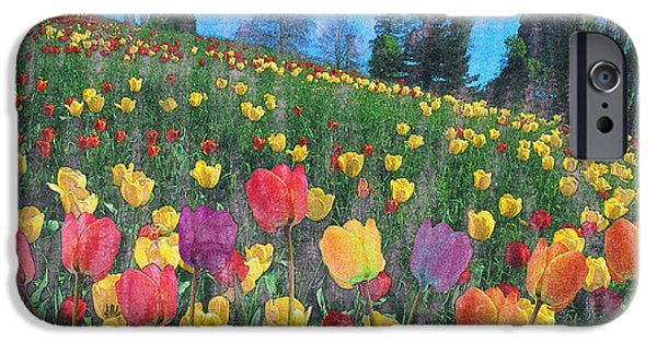 Caruso iPhone Cases - Tulips Lake iPhone Case by Anthony Caruso