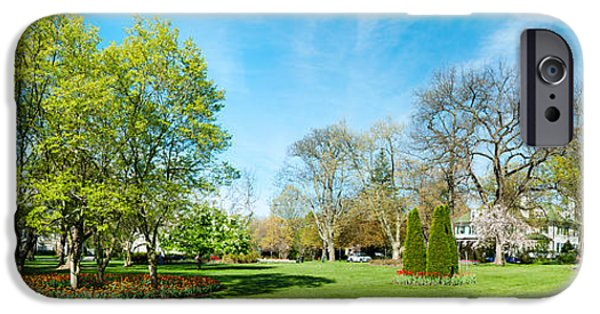 Garden Scene iPhone Cases - Tulips With Trees At Sherwood Gardens iPhone Case by Panoramic Images