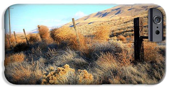 Yakima Valley iPhone Cases - Tumbling Tumbleweeds iPhone Case by Carol Groenen