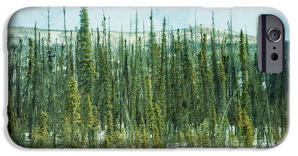 Winter Scene iPhone Cases - Tundra Forest iPhone Case by Priska Wettstein