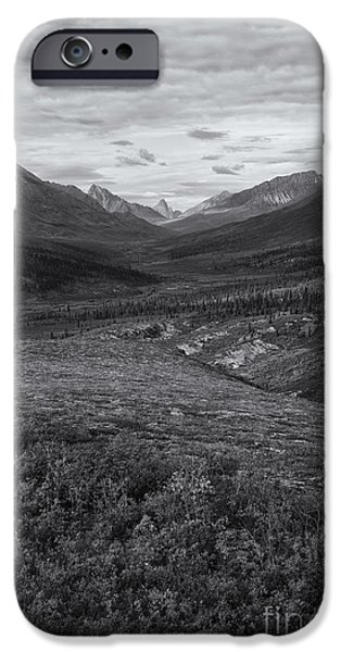 Oglivie Mountains iPhone Cases - Tundra Valley iPhone Case by Priska Wettstein