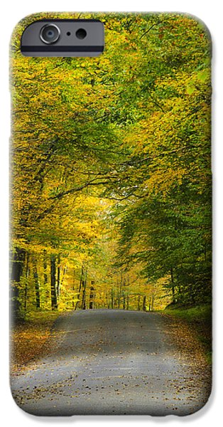Fall Scenes iPhone Cases - Tunnel Of Trees Rural Landscape iPhone Case by Christina Rollo