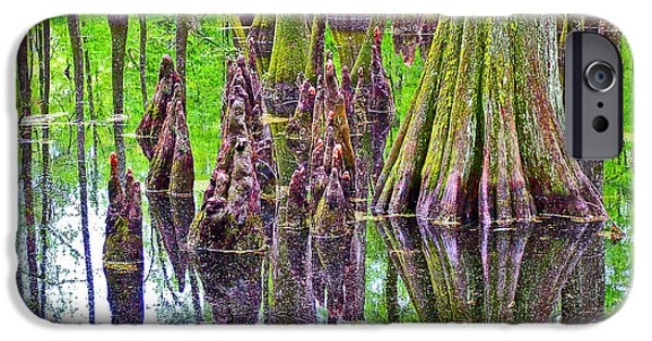 Natchez Trace Parkway iPhone Cases - Tupelo/Cypress Swamp Reflection at Mile 122 of Natchez Trace Parkway-Mississippi iPhone Case by Ruth Hager
