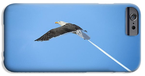 Flying Seagull iPhone Cases - Turbo seagull iPhone Case by Michael Mogensen