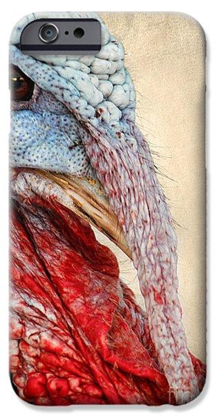 Gamebird iPhone Cases - Turkey iPhone Case by Darren Fisher