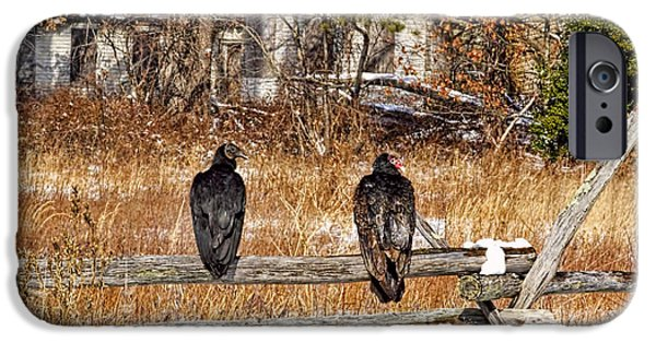 Winter Scene iPhone Cases - Turkey vultures and Black vulture  perched on fence of abandoned house iPhone Case by Geraldine Scull