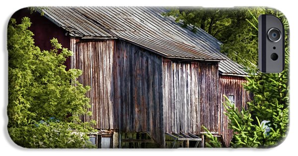 Old Barns iPhone Cases - Turn Your Face to the Sun iPhone Case by Joan Carroll