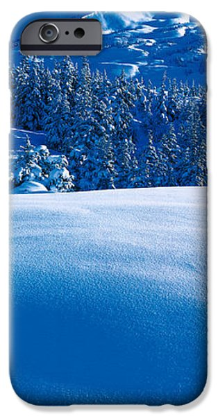Country Snow iPhone Cases - Turnagain Pass Kenai Peninsula Ak Usa iPhone Case by Panoramic Images