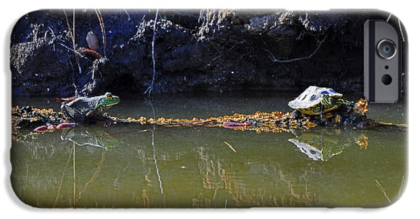 Slider Photographs iPhone Cases - Turtle and Frog on a Log iPhone Case by Al Powell Photography USA