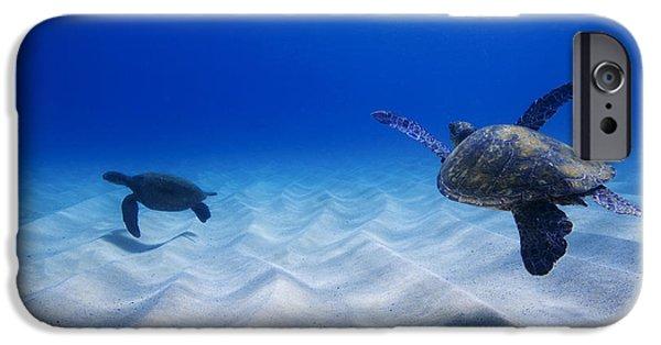 Ocean Mammals iPhone Cases - Turtle Pair iPhone Case by Sean Davey