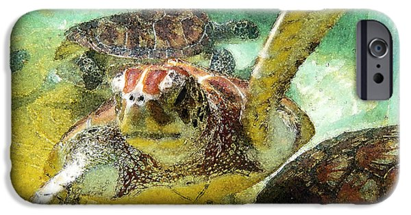 Reptiles Photographs iPhone Cases - Turtle Swim iPhone Case by Carey Chen