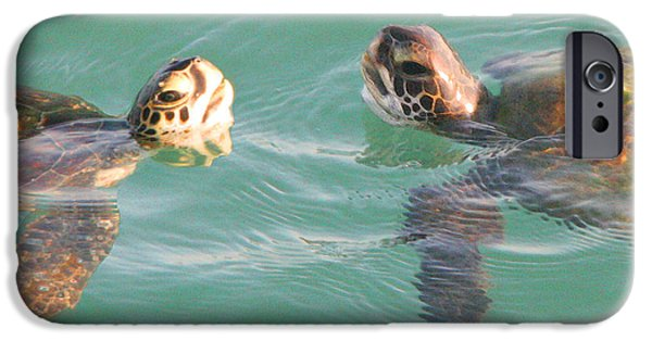 Ocean Pyrography iPhone Cases - ...Turtle Talk... iPhone Case by W Gilroy