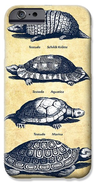 Reptiles iPhone Cases - Turtles - Historiae Naturalis - 1657 - Vintage iPhone Case by Aged Pixel