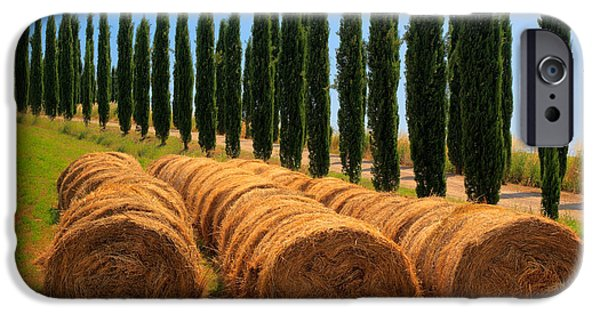 Agricultural iPhone Cases - Tuscan Hay iPhone Case by Inge Johnsson