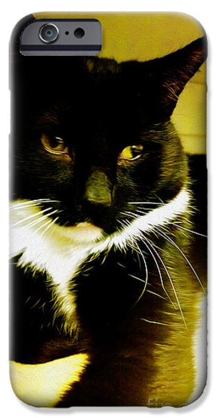 Recently Sold -  - Child iPhone Cases - Tuxedo Portrait iPhone Case by Cheryl Young