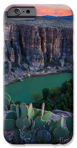 Epic iPhone Cases - Twilight Cactus iPhone Case by Inge Johnsson