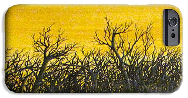 Erik Coryell iPhone Cases - Twilight Partial iPhone Case by Erik Coryell