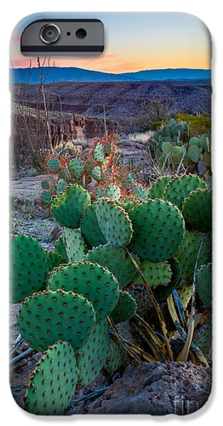 Epic iPhone Cases - Twilight Prickly Pear iPhone Case by Inge Johnsson