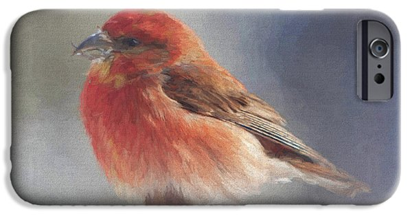 Crossbill iPhone Cases - Twisted iPhone Case by Gerry Sibell