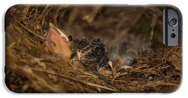 Baby Bird Digital iPhone Cases - Two Baby Sparrows In A Nest iPhone Case by Chris Flees
