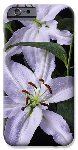 White Tiger iPhone Cases - Two Beautiful White Lillies iPhone Case by Garry Gay