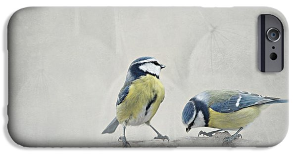 Animal Photography Mixed Media iPhone Cases - Two Birds iPhone Case by Heike Hultsch