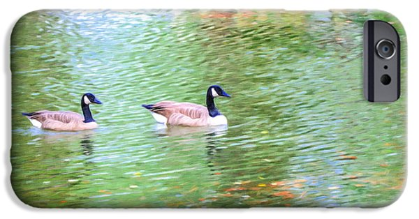 Canadian Geese Paintings iPhone Cases - Two Canadian geese in the water iPhone Case by Lanjee Chee