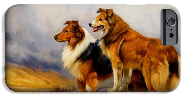 Wright Barker iPhone Cases - Two Collies Above A Lake DR iPhone Case by Wright Barker