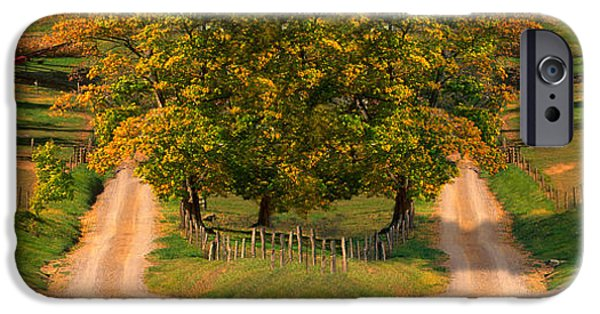 Meadow Photographs iPhone Cases - Two Dirt Roads Passing Through Farms iPhone Case by Panoramic Images