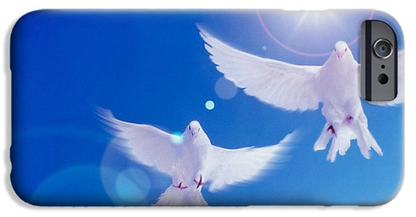 Dove iPhone Cases - Two Doves Side By Side With Wings iPhone Case by Panoramic Images