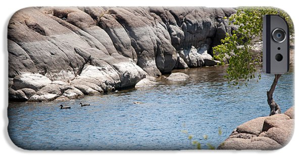 Watson Lake iPhone Cases - Two Ducks iPhone Case by Shannon Hastings