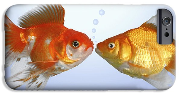 Greg Cuddiford Digital iPhone Cases - Two Fish Kissing FS502 iPhone Case by Greg Cuddiford