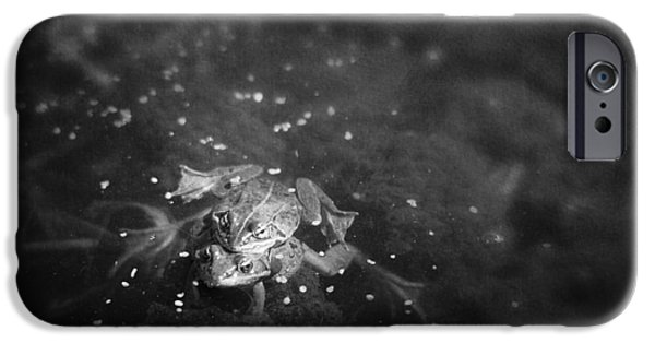 The White House Photographs iPhone Cases - Two Frogs In A Pond Mating By Laying iPhone Case by Roberta Murray