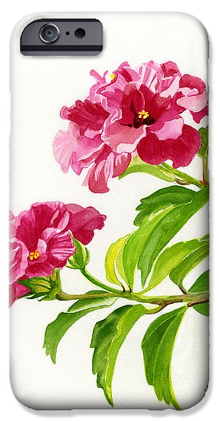 Dark Pink iPhone Cases - Two Hibiscus Rosa Sinensis Blossoms iPhone Case by Sharon Freeman
