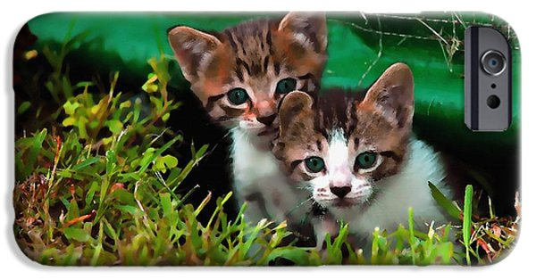 Business Paintings iPhone Cases - Two Kittens H b iPhone Case by Gert J Rheeders