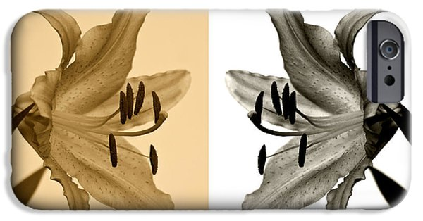 Asiatic Lily iPhone Cases - Two Lilies iPhone Case by Sandy Keeton