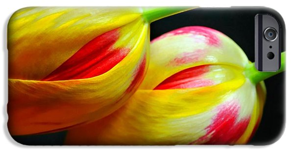 Nature Abstracts iPhone Cases - Two Lips iPhone Case by Diana Angstadt