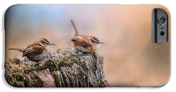 Wren iPhone Cases - Two Little Wrens iPhone Case by Jai Johnson