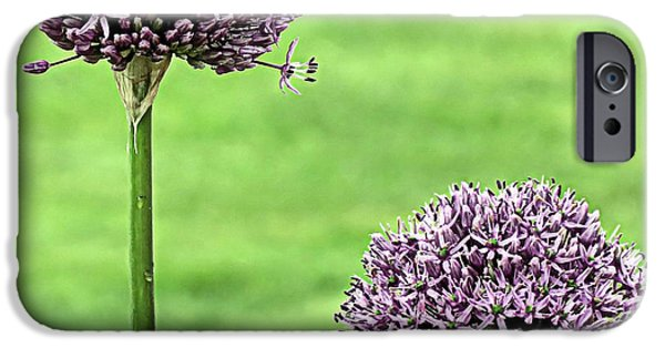 Purple Sensation iPhone Cases - Two Purple Sensation Alliums iPhone Case by Janice Drew