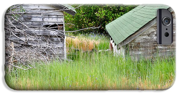 Old Barns iPhone Cases - Two Sheds iPhone Case by Shelley Ewer