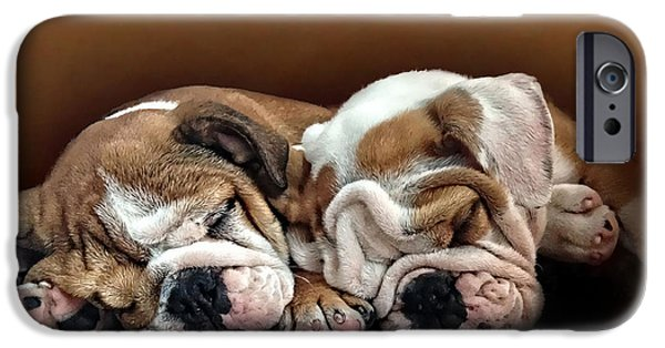 Puppy Digital Art iPhone Cases - Two Sleeping Bulldog Pups iPhone Case by Digital Pet Portraits UK